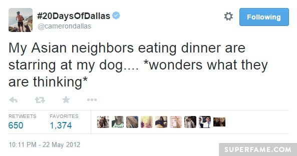 Cameron Dallas' racist dog tweet.