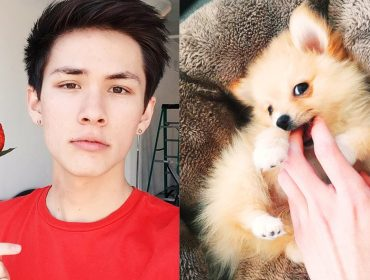 Carter Reynolds' dog.
