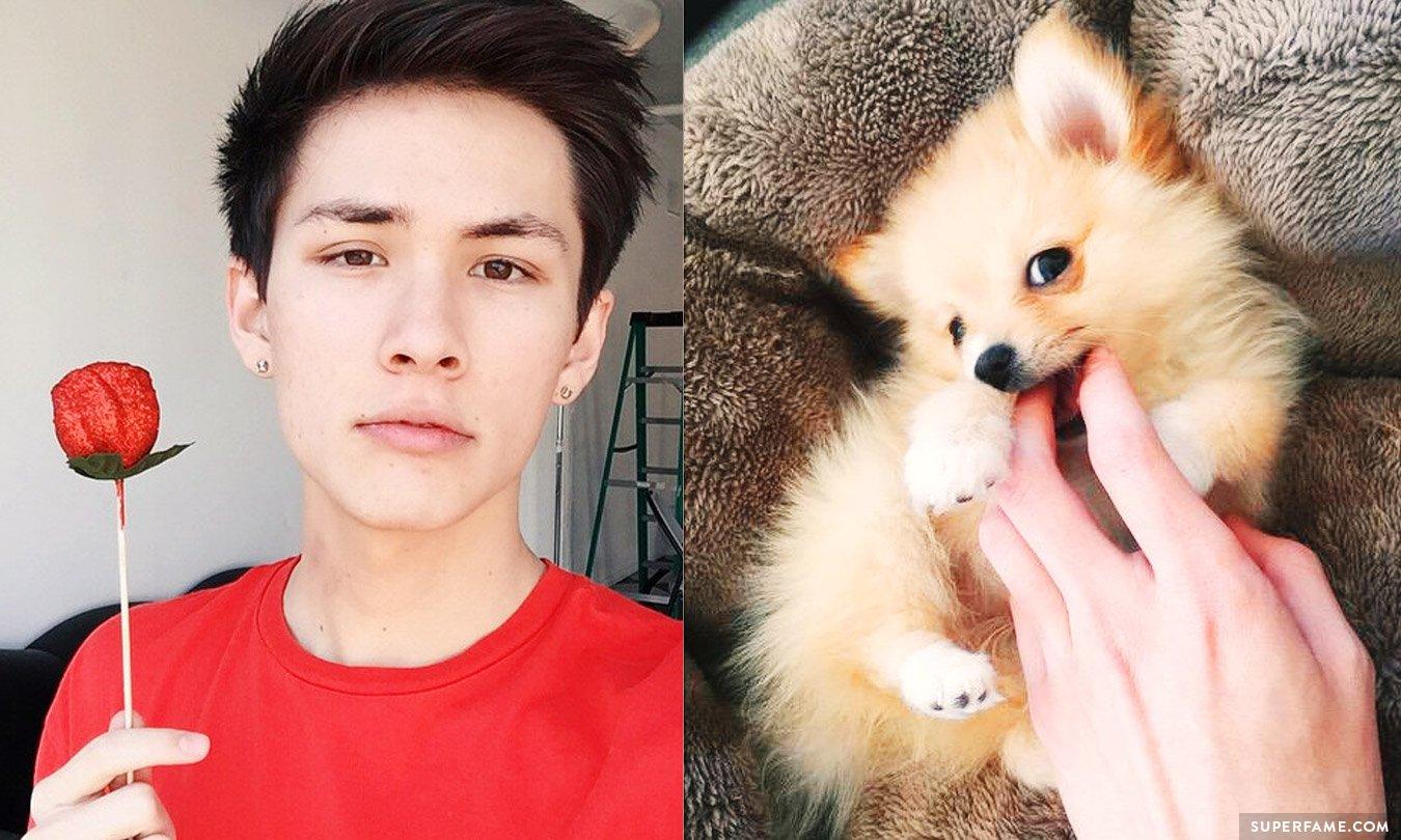 Rip Carter Reynolds Puppy Winnie Dies Its All My Fault Superfame
