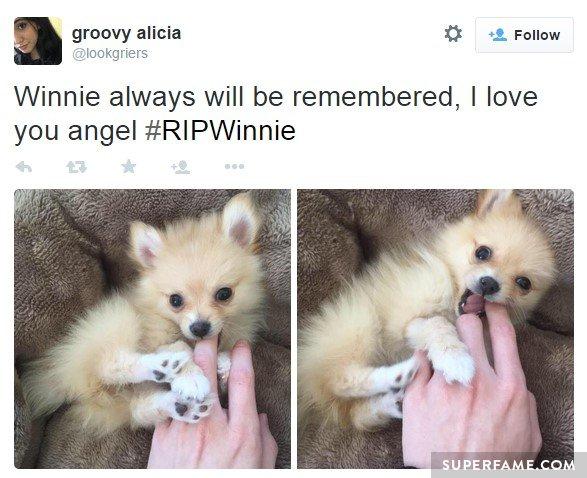 Love you angel.