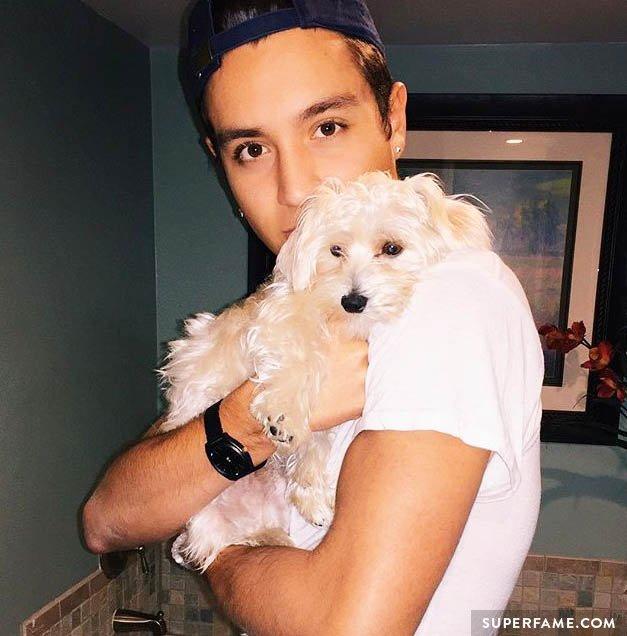 Gabriel Conte's dog.
