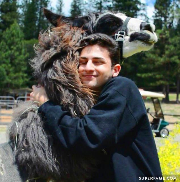 Twaimz hugs a llama.