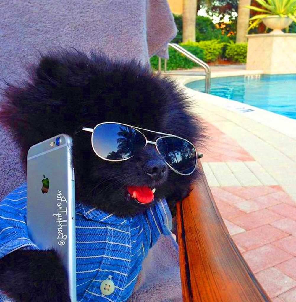 Barkley takes business calls.