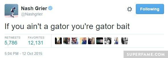 gator-bait