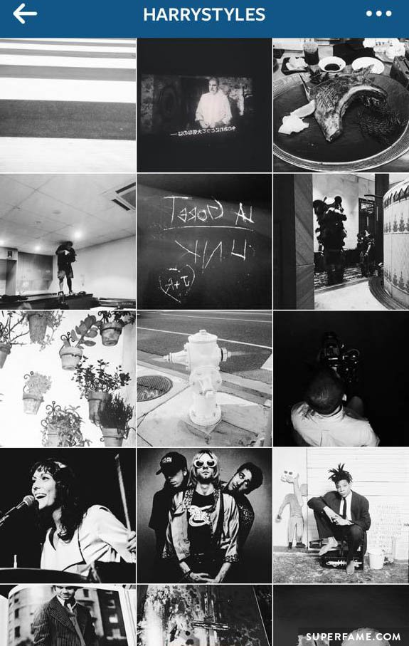 Harry Styles' Instagram.