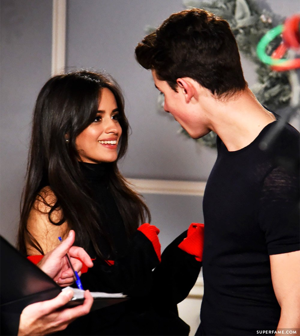 Camila Cabello and Shawn Mendes.