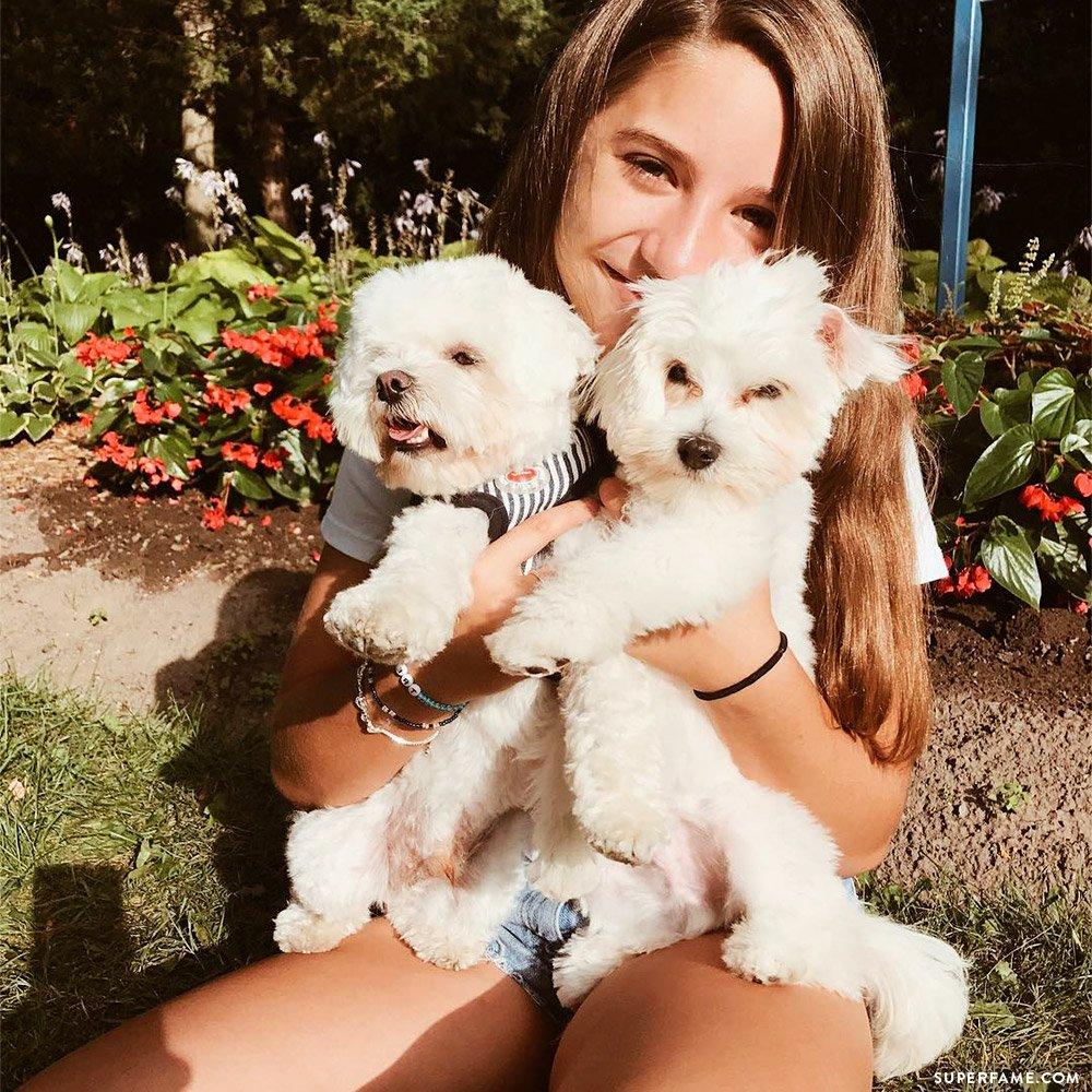 Kenzie Ziegler's dogs.